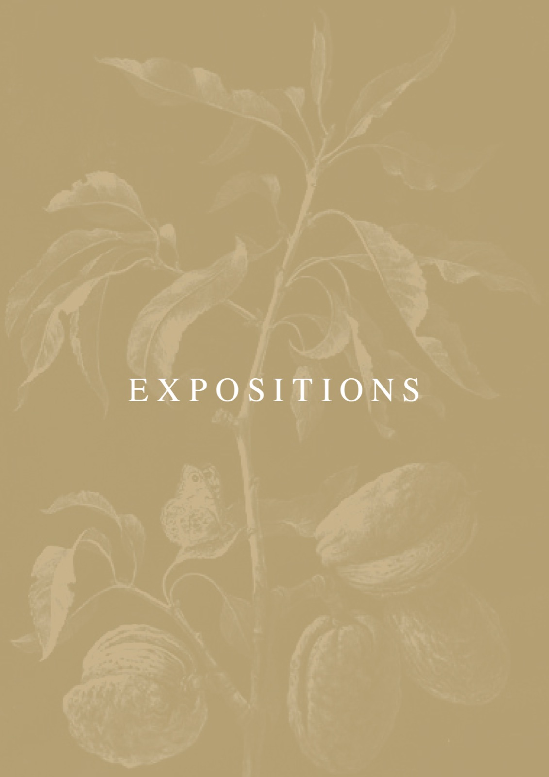 1001-expositions